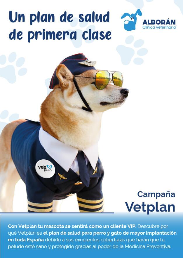 planes de salud mascotas aguadulce